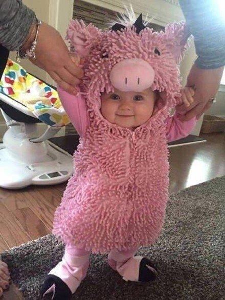 给小宝宝们穿上各种小动物服装后,萌度系数爆表啊