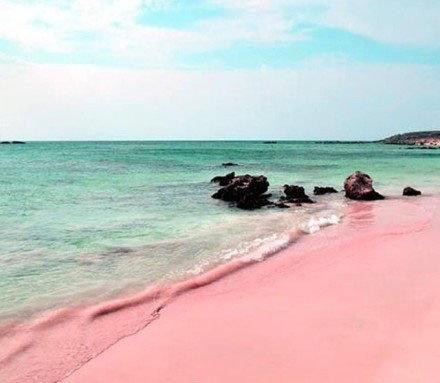 巴哈马哈勃岛东侧的粉色沙滩