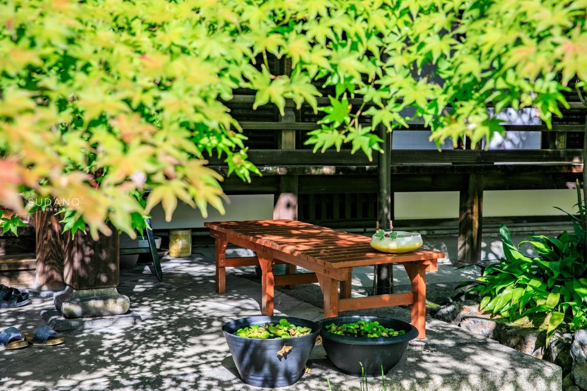 日本小众景点推荐:京都胜林寺,来自中国的禅宗美学令人赞叹