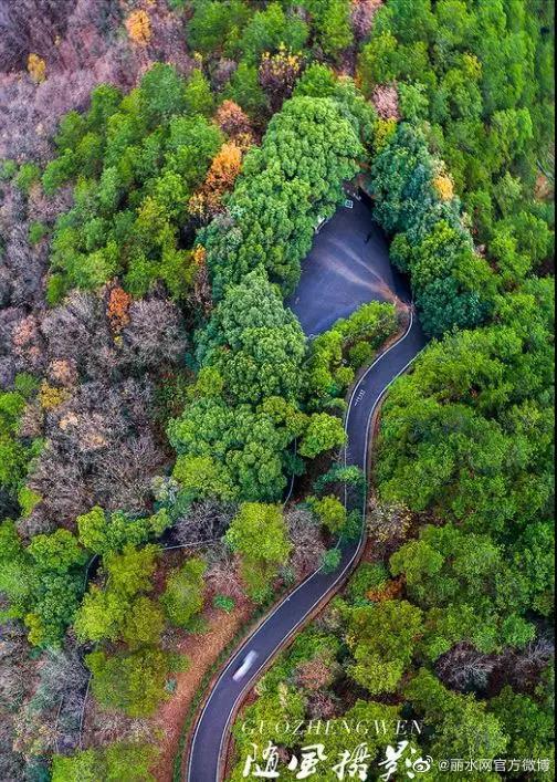 龙泉最美绿道上线啦!随手一拍就是大片~
