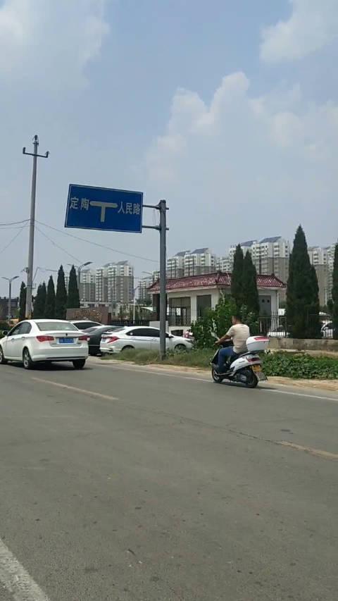 菏泽开发区华鹏玻璃门口的杨树是不是死了?夏天光秃秃的