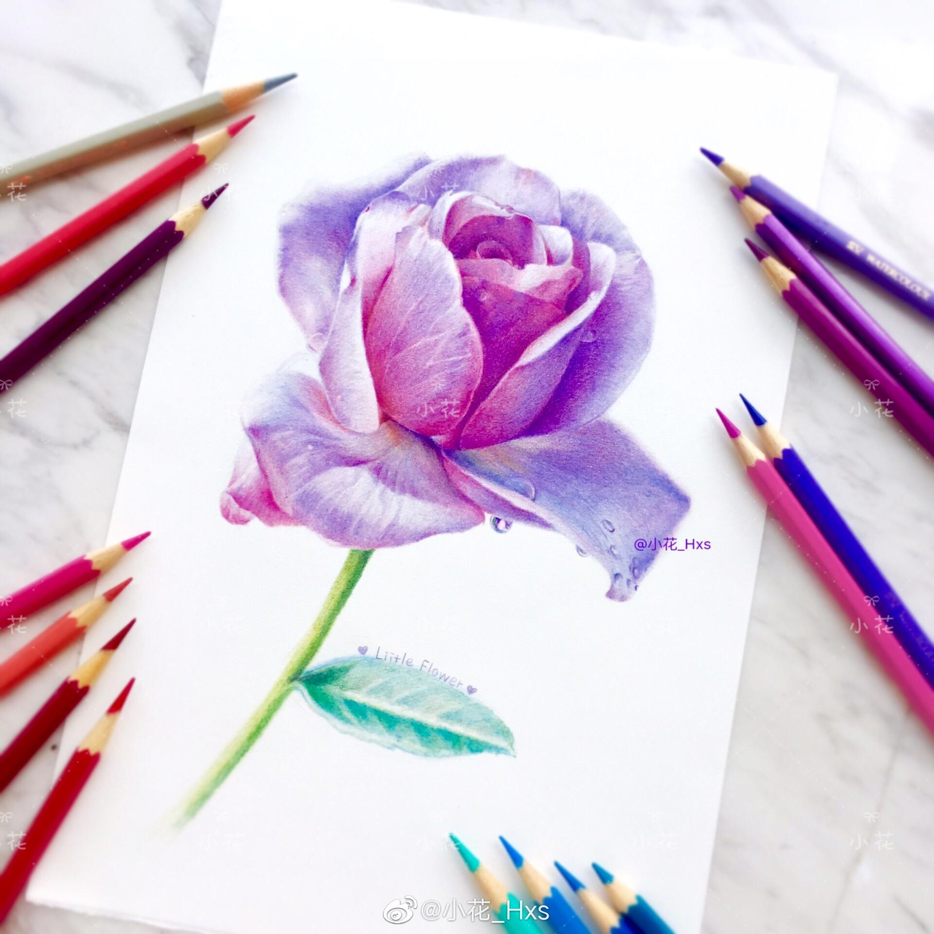 作者:@小花_Hxs梦幻紫玫瑰红辉水溶72色获多福细纹