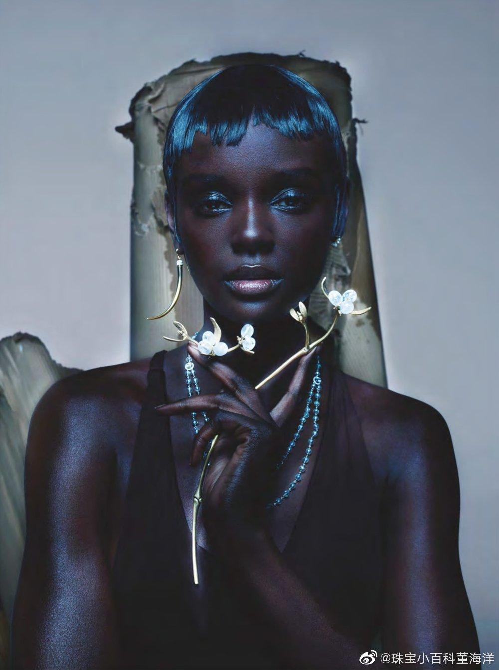 珠宝与黑美人~