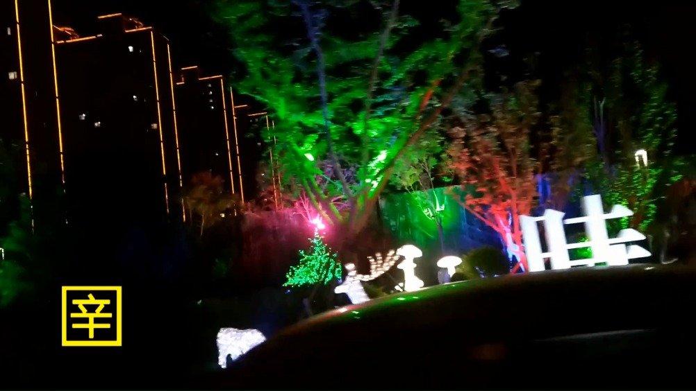辛集西边最美夜色建筑景观——西美!