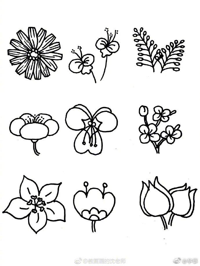 花朵简笔画手绘手帐素材,有需要的妈妈们码起来吧!