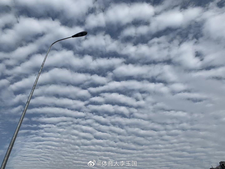 鱼鳞云的出现是冷空气来之前的一种云层,预示着近期天气状况不稳定