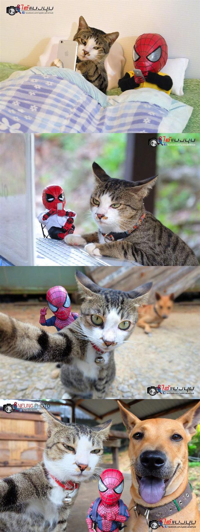 泰国的一名摄影师是蜘蛛侠的粉丝
