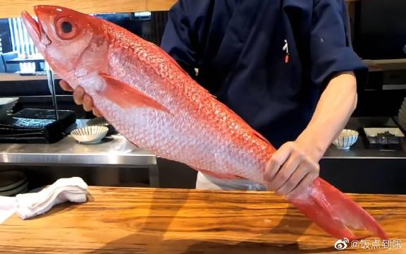 日本料理——巨型长尾紅鲷魚的寿司和生鱼片
