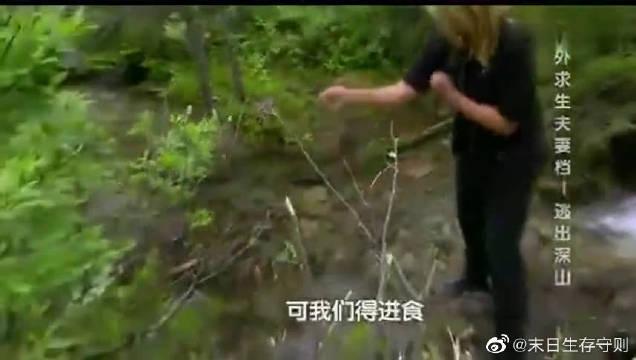 夫妻档这次野外探险太幸运来了,用土方法捉到几条大鱼