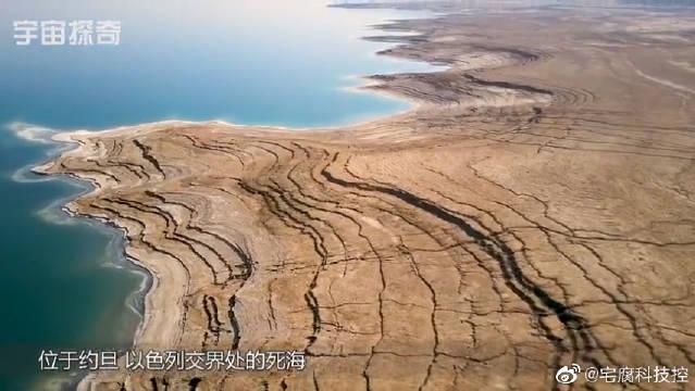 死海也能拥有生命?科学家:盒状嗜盐细菌在死海安家!