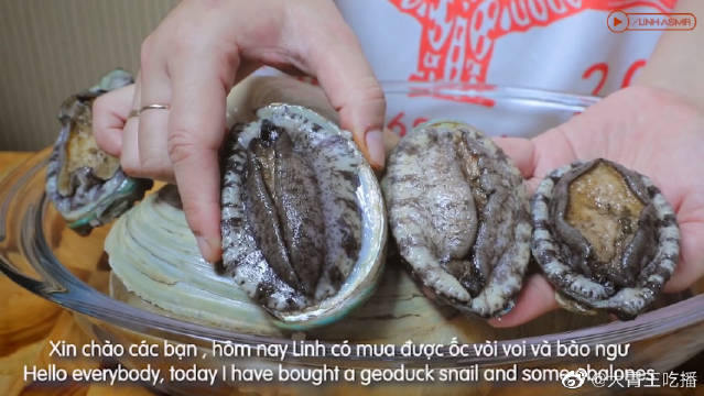 今天吃鲍鱼和象拔蚌!这样吃真是鲜美的不得了!