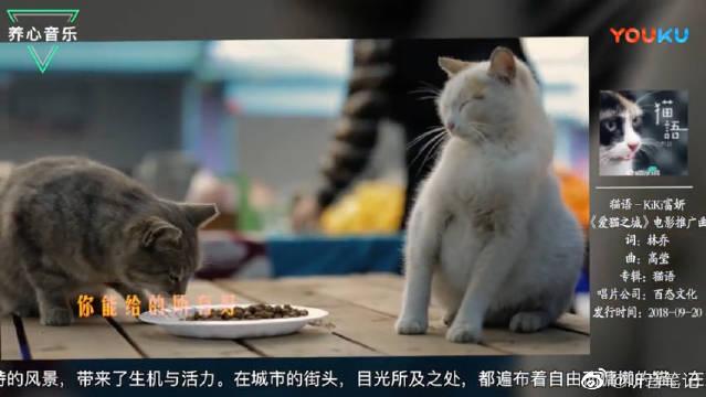 养猫人士的最爱, KiKi富妍献唱《爱猫之城》主题曲