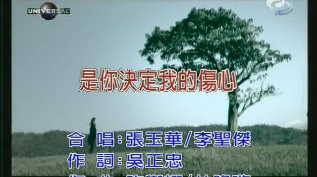 李圣杰&张玉华《是你决定我的伤心》@歌手李圣杰 我必须承认不敢释