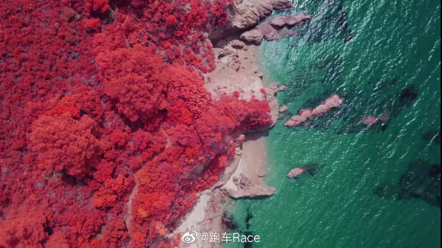 摄影师红外镜头下的秋日风光 每一帧都美到极致!