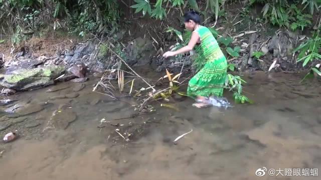 美女在野外水坑中抓鱼,才一会功夫就抓到两条大肥鱼,太过瘾了!
