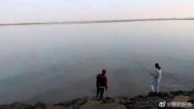 矶钓,黑鲷季来临,鹿港北堤浅滩钓鱼