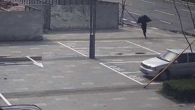 小偷成功得手准备逃跑,结果碰上了正在跑马拉松的特警
