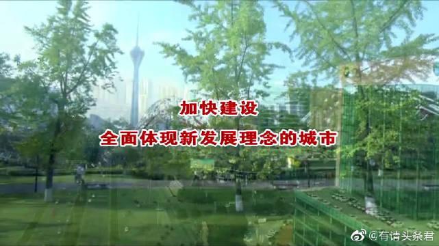 成华新闻19.08.20
