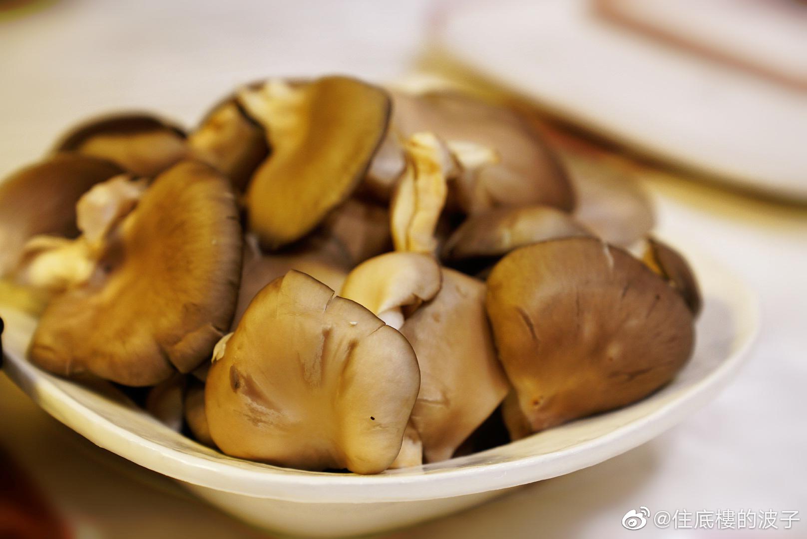 大冷夜,在家燙肉涮菇。熱氣氤氲之間,每個人埋頭吃東西的樣子