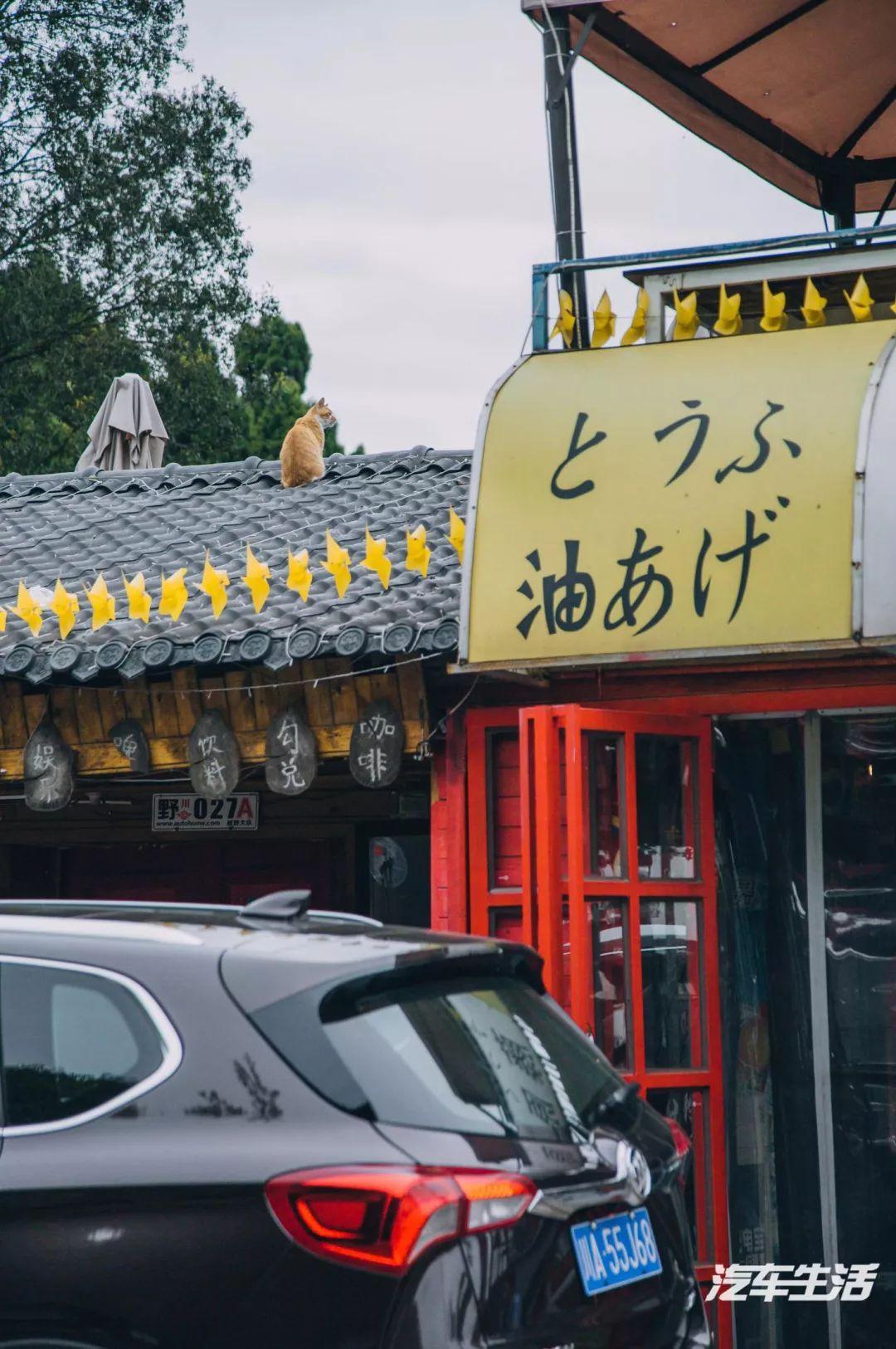 """""""逮虾户""""的快乐你不懂,昂科威五周年挑战""""成都秋名山"""""""