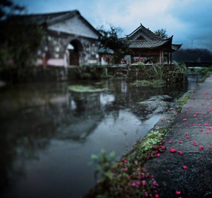空门寂寂淡吾身,溪雨微微洗客尘。