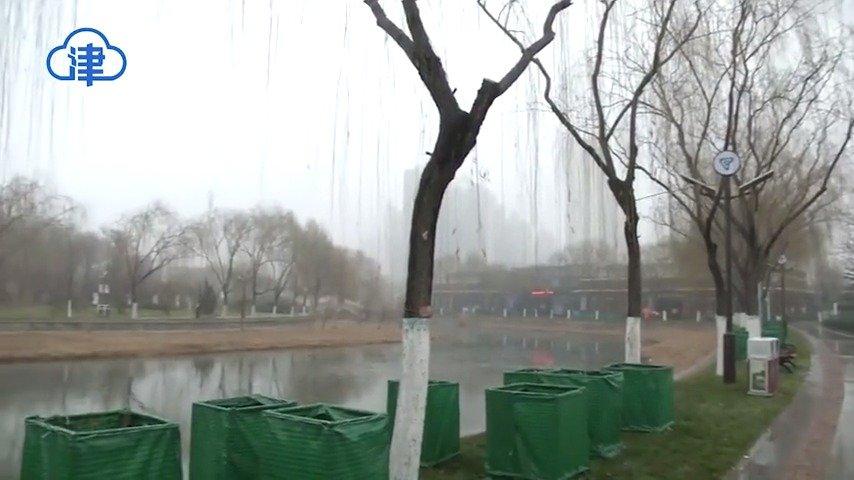 雨雪停了 降温来了 本周天津再迎2股冷空气 降温6-8度