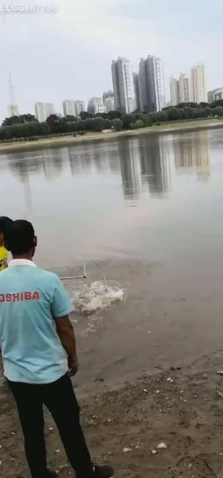 松江西路附近江边出大鱼了,看看能有几斤?