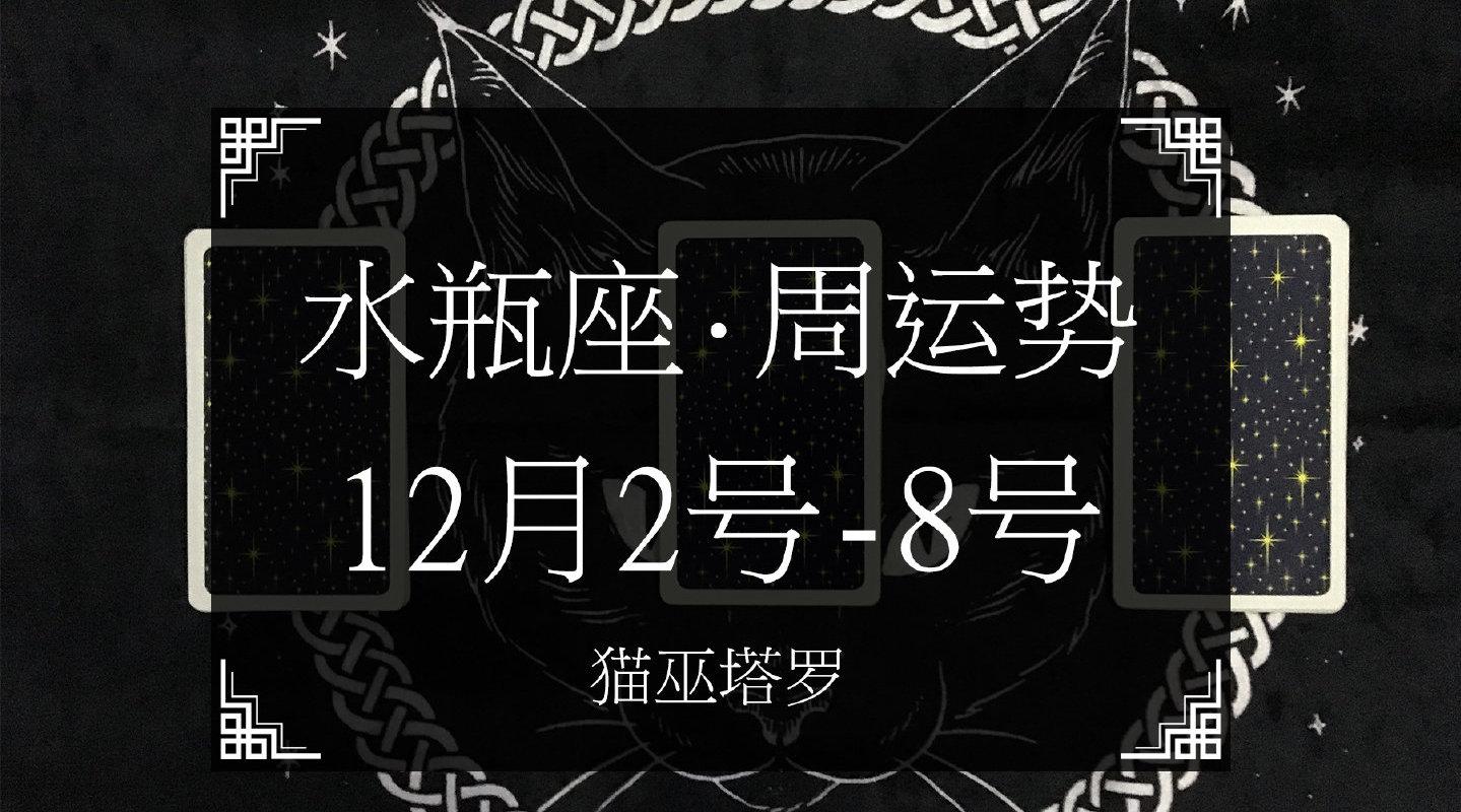 猫巫塔罗:2019年水瓶座12月份爱情周运势(12.2-8),感情困住!