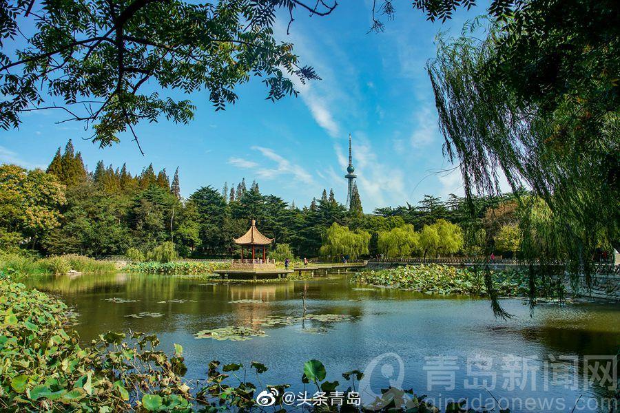 秋日中山公园一湖碧水 树木草地正在变换颜色