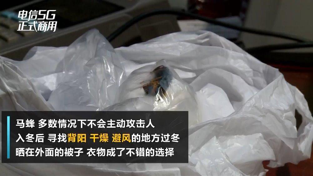 杭州市中医院皮肤科门诊,一位妈妈拿着一个塑料袋在给医生看