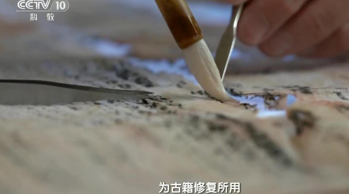 《中国影像方志》福建连城篇。武夷山脉,绵延千里