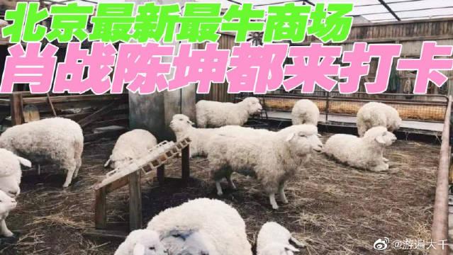 北京最新最牛商场,把农场和画廊都搬进来,肖战、陈坤都来打卡。