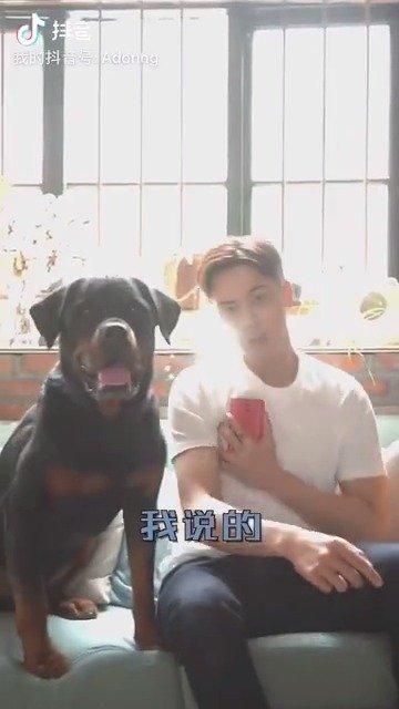 陈伟霆给单身狗介绍对象,结果被喷一脸口水