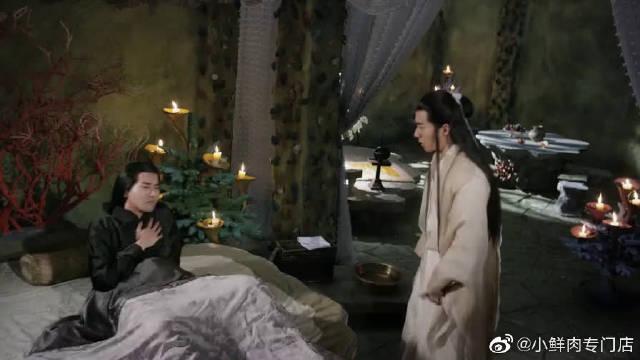 主演:杨幂 赵又廷