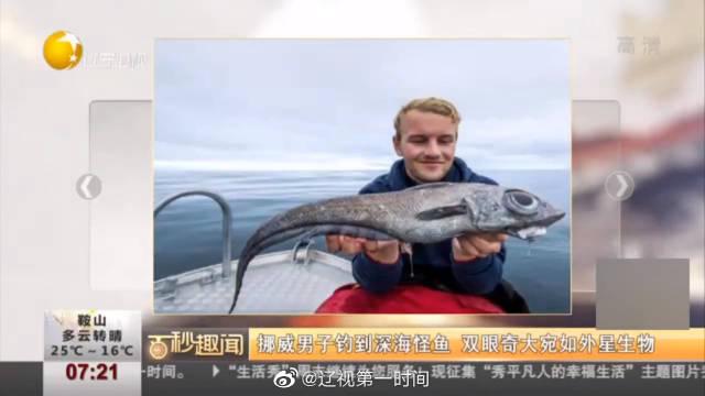 挪威男子钓到深海怪鱼 双眼奇大宛如外星生物