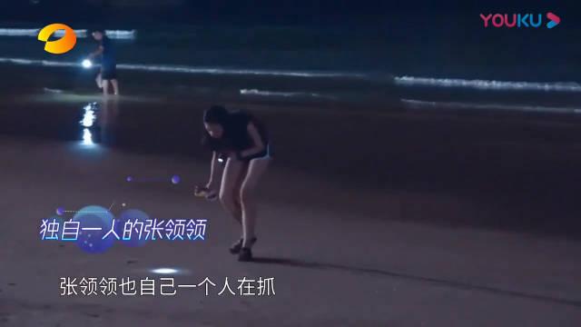 甜到爆!张领领陆政羽海边浪漫捡贝壳,少女心炸裂!