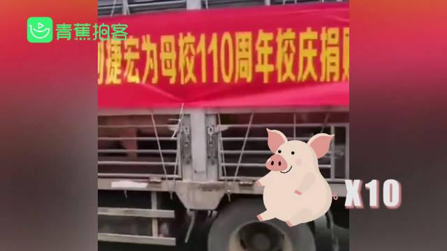 广东阳江一中迎110周年校庆,一名校友为母校捐赠了10头大肥猪