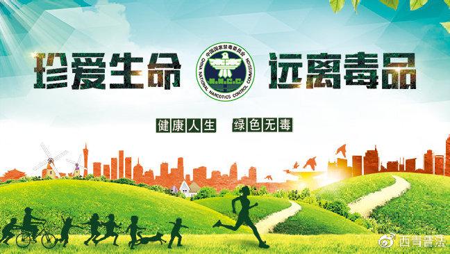 """西青区举办""""6.26""""国际禁毒日集中法治宣传活动"""