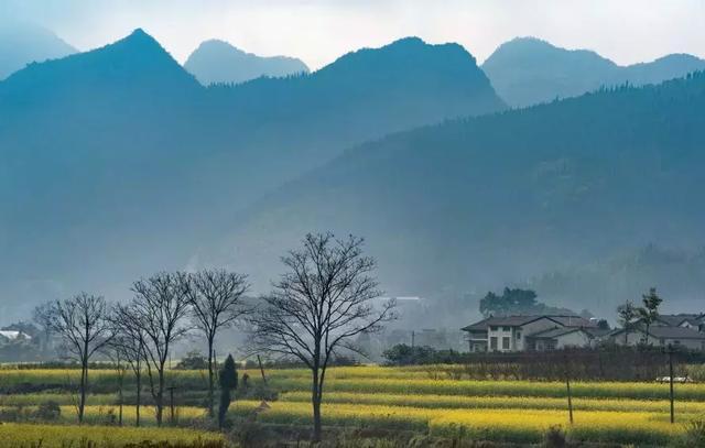 轻烟袅绕的吊脚楼, 高大翠绿的黄角树, 兴义的乡村太美了.