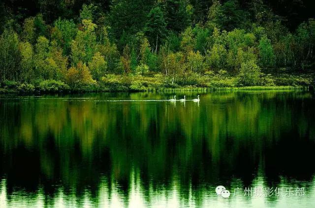多种构图技巧的结合 风光摄影中的构图技巧有很多,在实拍时,可以将它们结合起来应用,这样往往能够达到最理想的效果。在本例中,摄影师利用光线的反射原理拍摄湖中的倒影,并利用水面的映射,逆向表现秋天丰富的色彩。这种拍摄方式可以具象也可以抽象,它们的区别就在于水面是否静止。