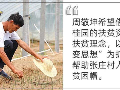 周敬坤:苗木力量 丨 中国老村长