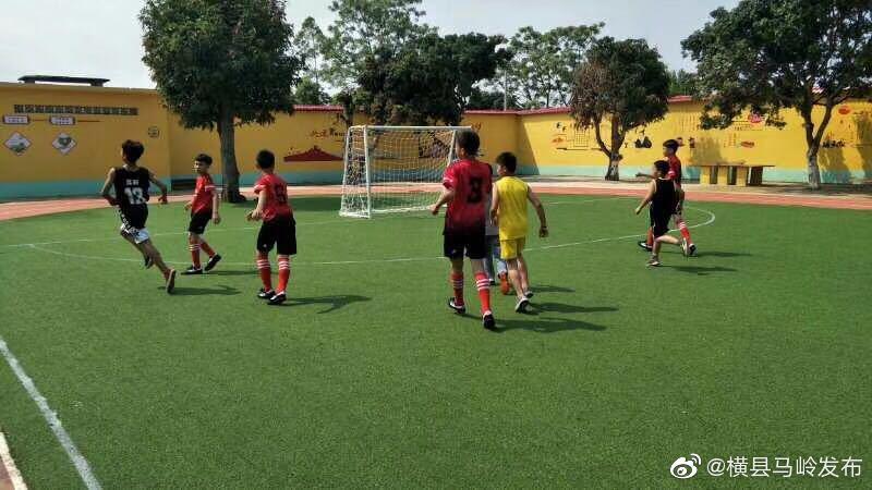 马岭镇小学生五人制足球比赛圆满完成