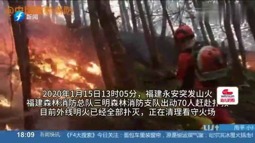 三明突发森林火灾,火苗沿山体迅速蔓延,消防灭火速战速决