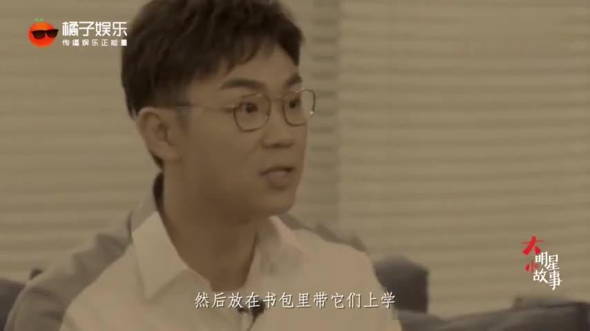 大鹏说自己不可能拍出冯小刚的电影,因思想高度达不到?好耿直