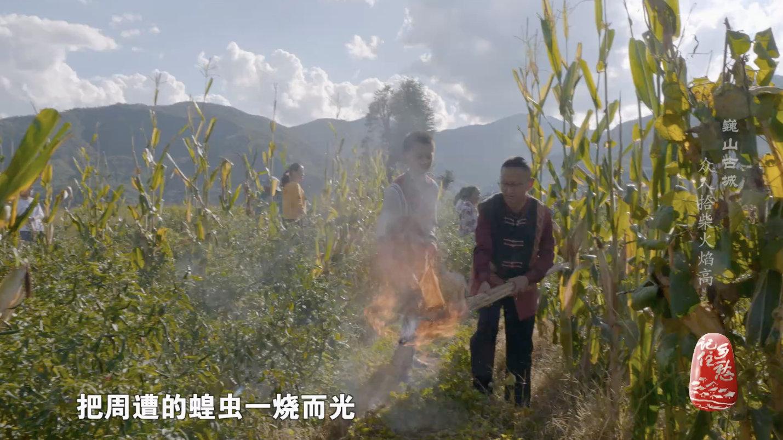 相传,很久以前,彝族先民在巍山一带辛苦耕作,期盼能有个好收成