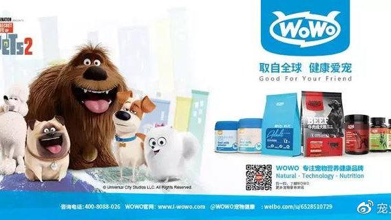 补钙不等于补关节,WOWO如何在宠物营养品市场突出重围