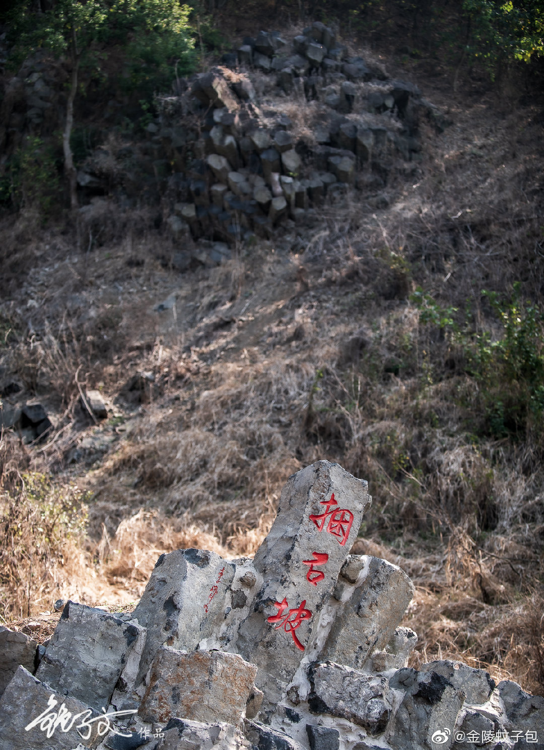 扬州捺山地质公园有很多火山爆发后的自然景观