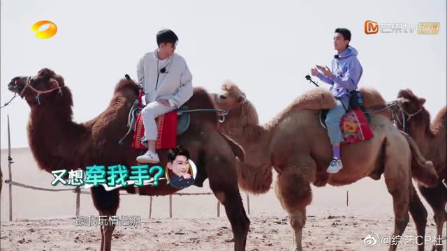 爆笑!吴磊要和张翰拍沙漠情侣照吸引游客,张翰