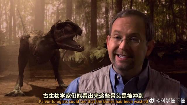 古生物学家还原7000万年前的玛君龙求偶场面