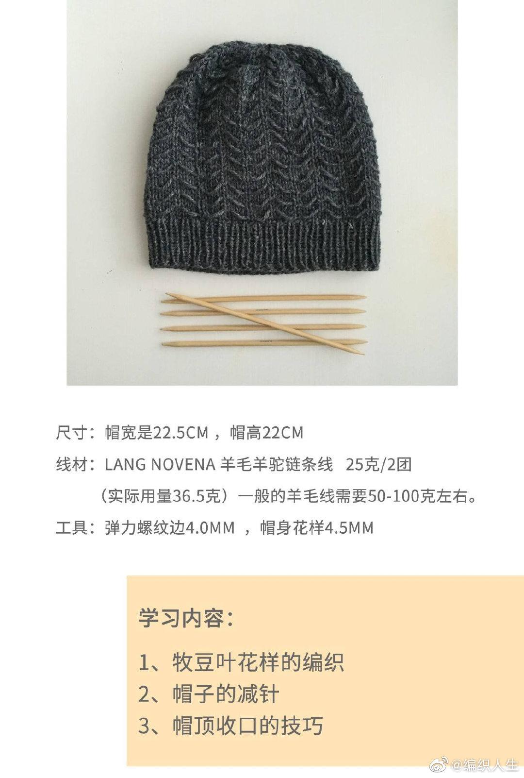 编织人生学院免费课程~棒针编织 牧豆叶情侣帽子视频教程tamarugo帽子